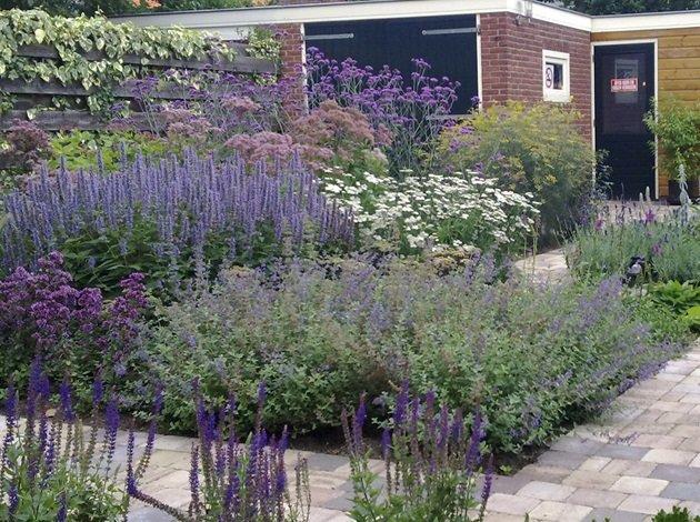 Beplanting in de tuin van jaarsveld tuinen for Tuin beplanten