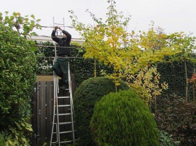 Winterklaar Maken Tuin : To do tips om de tuin winterklaar te maken latuin eu