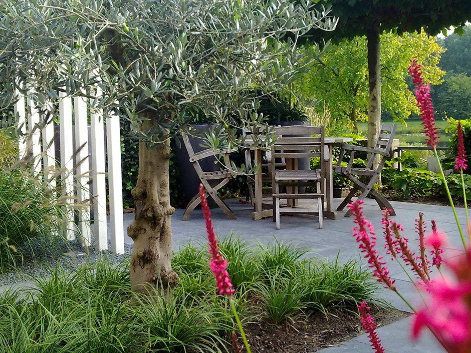 Kleine moderne sfeervolle achtertuin van jaarsveld tuinen