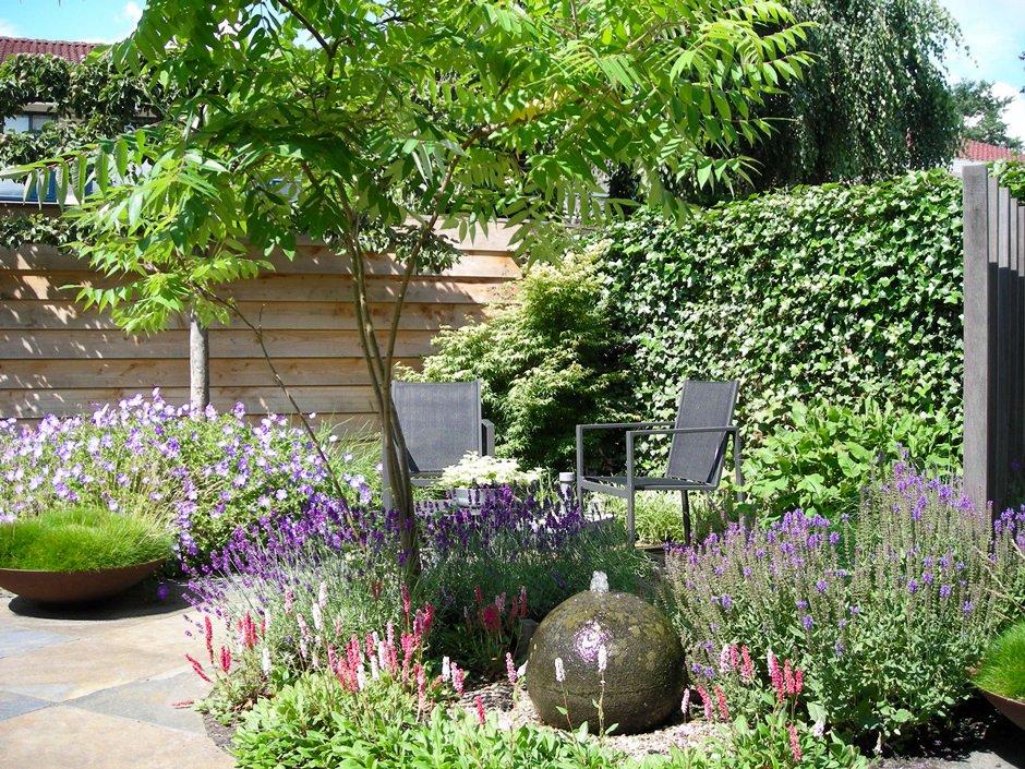 Verrassende patiotuin in houten van jaarsveld tuinen for Vacature tuin