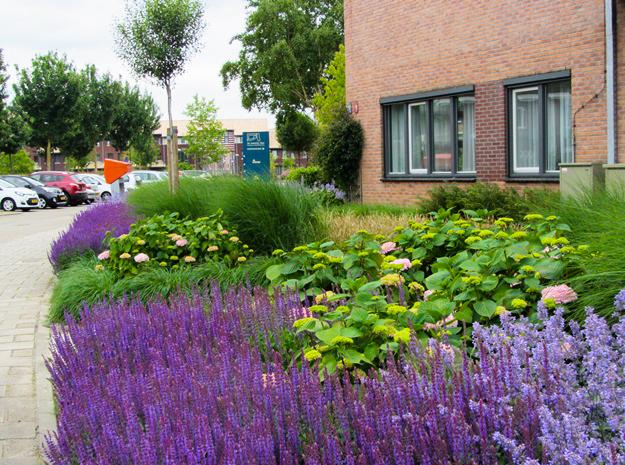 Beplantingsplan Natuurlijke Tuin : Perfect beplantingsplan laten maken van jaarsveld tuinen