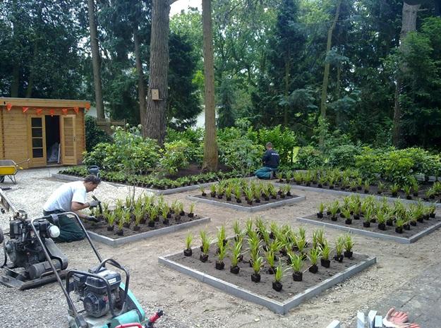 Tuinbeplanting van jaarsveld tuinen for Moderne tuin aanleggen